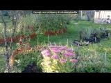 «Осень 2014» под музыку Мировая классика - Танцующая осень. Picrolla